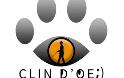 Prochaines activités de l'association Clin d'Oeil