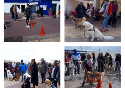 Dog Day – Ouistreham