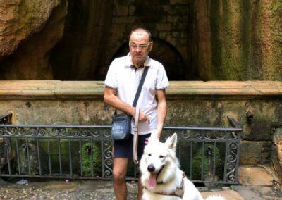 Les chiens pendant le confinement – Ora et Jouba