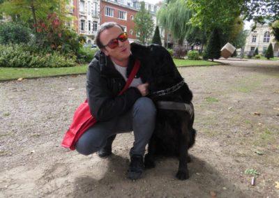 Les chiens pendant le confinement – Hélios et Palma